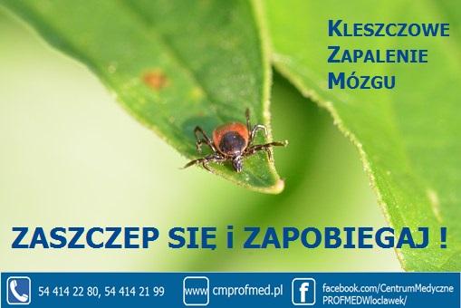 SZCZEPIONKA P/KLESZCZOWEMU ZAPALENIU MÓZGU!